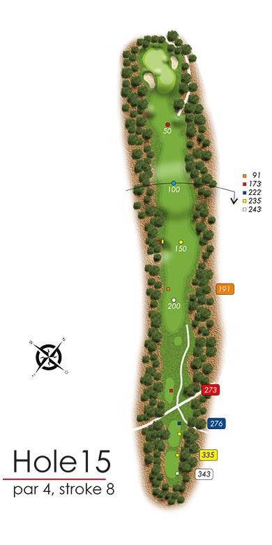 Hole 15 - simple